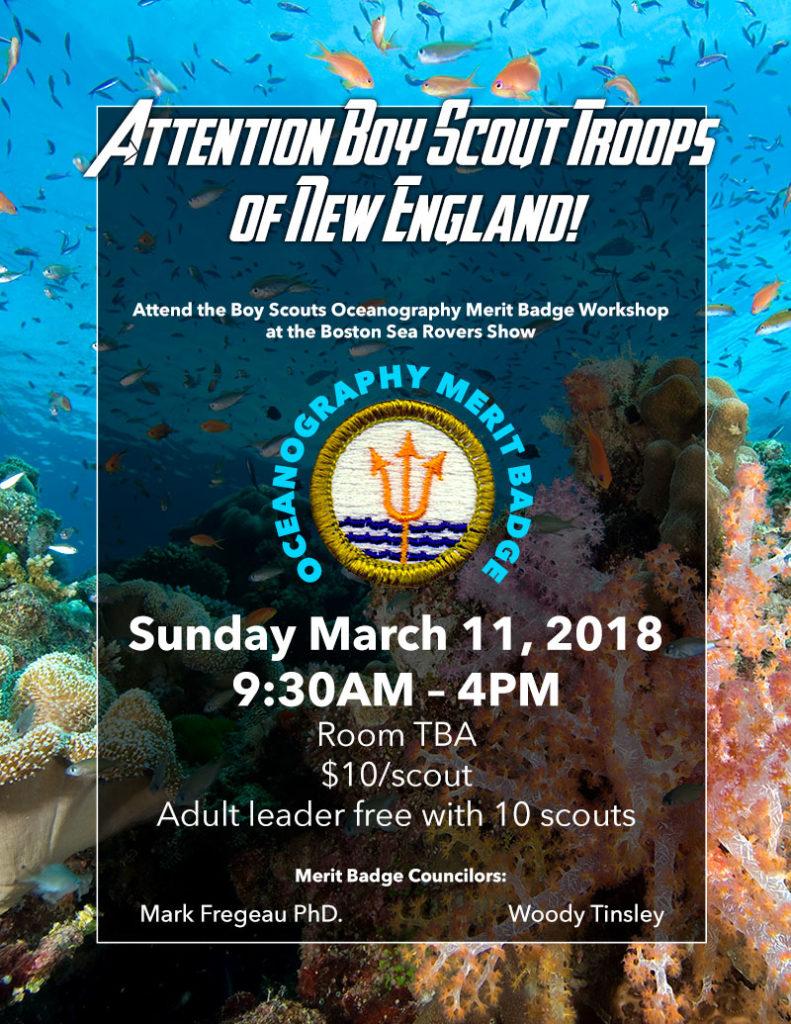 boy scout ocean merit badge