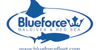 Blue Force Fleet Logo