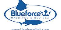 Blue Force Fleet Logo